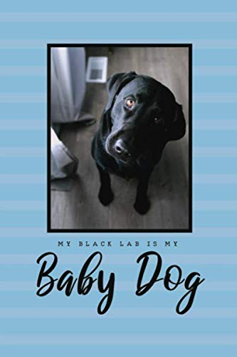 """""""My Black Lab Is My Baby Dog"""" Black Lab Eyes Are Sweet Puddles Of Love Lined Notebook: Dog Lover"""