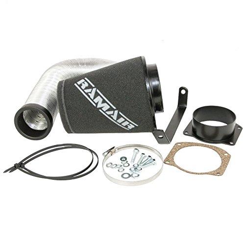 Ramair Filters SR-137 Automotive Air Filter Kit: