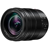 Panasonic LUMIX G Leica DG Vario Elmarit 12-60mm f/2.8-4.0 Asph. Power O.I.S. H-ES12060E - International Version (No Warranty)