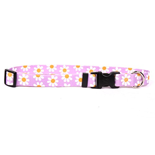 Yellow Dog Design Lavender Daisy Break Away Cat Collar, One Size Fits All