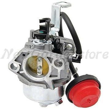 Carburador Motor motocultor Loncin LC 185 FDS LC 190 FDS 170020723 ...