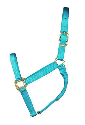 Hamilton 1-Inch Nylon Quality Halter for 800 to 1100-Pound Horse, Average, Ocean Blue ()