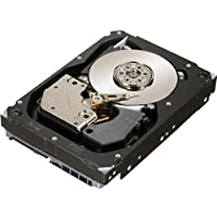 Seagate Cheetah 15K.7 600 GB 15000RPM SAS 6 Gb/s 16MB Cache 3.5 Inch Internal Bare Drive ST3600057SS