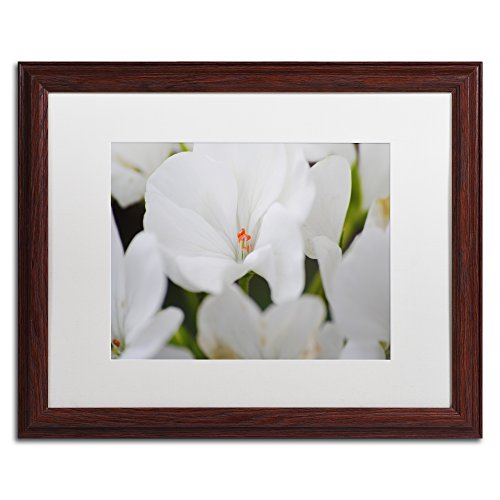 Clustered Jewel by Monica Mize Wood Frame, 16