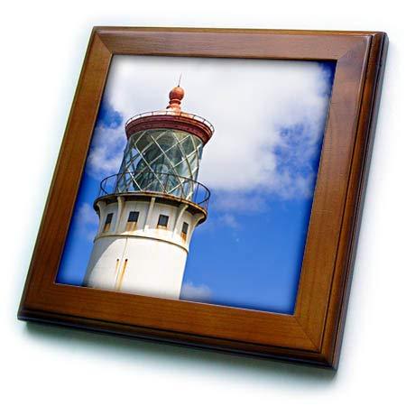 - 3dRose Danita Delimont - Hawaii - Kilauea Point Lighthouse, Island of Kauai, Hawaii, USA - 8x8 Framed Tile (ft_314811_1)