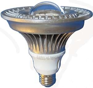 Par38 High Power LED bulb Lamp 860 Lumens Warm White Lights of America