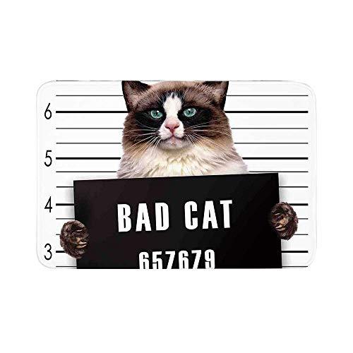 C COABALLA Cat Lover Decor Durable Door Mat,Bad Gang Cat in Jail Kitty Under Arrest Criminal Prisoner Hangover Artsy Work for Living Room,15.7