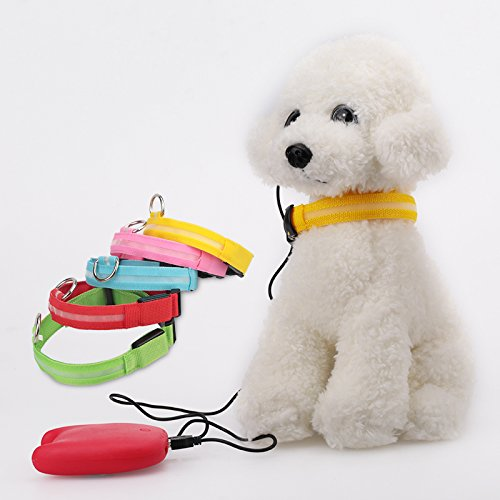 best2shop69 USB Rechargeable LED Dog Collar Night Safety Flashing Glow Pet Dog Collar With Usb Cable Charging Dogs Accessory for christmas - Sunglasses Oakley Academy