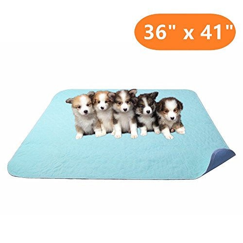 KOOLTAIL Washable Pee Pads for Dogs – Waterproof Dog Mat Non-Slip Puppy Pad for Whelping Potty Training