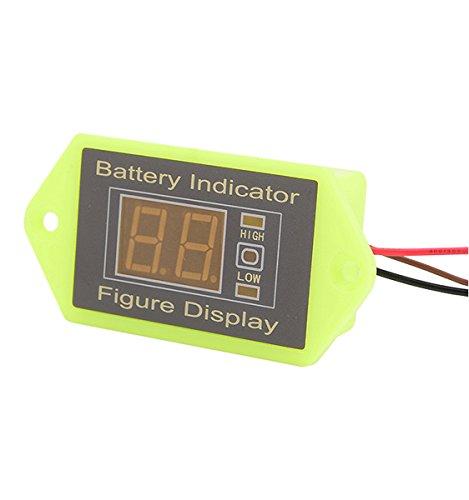 CPTDCL 24V Lead Acid Battery Voltmeter Low Voltage Sound Alarm Battery Voltage Indicator LCD Digital Battery Voltage Tester, Green