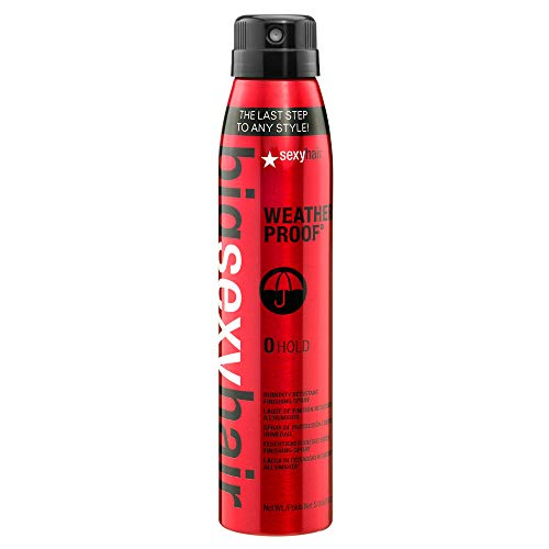 SEXYHAIR Big Weather Proof Humidity Resistant Finishing Spray, 5 oz