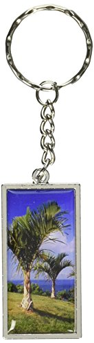 Graphics and More Tropical Deserted Island Palm Trees Key...