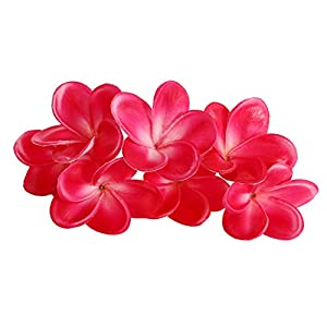 Xilyya 10PCS Natural Real Touch Artificial Not Silk Plumeria Flowers Head with Stem for DIY Cake Decoration and Wedding Bouquets (Rose Red) 53