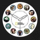 Koolatron National Geographic Animal Clock