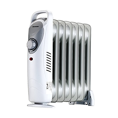 Homeleader DF-600H1-7 Oil Filled Radiator Heater, Portable Space Heater with Thermostat Control, 600W