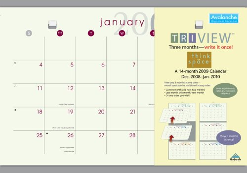 Thinkspace Tri-View 2009 Calendar: 14-month Calendar, December 2008-january 2010