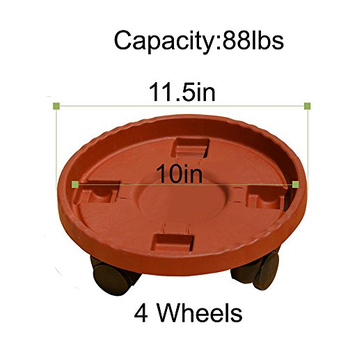 DEWEL Indoor Plant Caddy Plant Stand with Wheels PP Plastic Durable Resin Material Clear Color Plant Caddy 5 Size Optional 9inch 10inch 11inch 12inch 14inch (2# Inner Dia 10in)