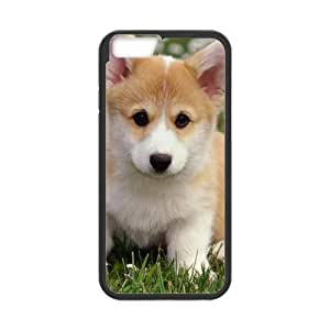 Fashion dog Personalized iPhone 6 Case Cover