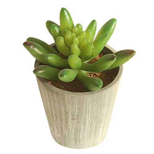 Dirance Simulated Succulent Plant DIY Artificial Bonsai Gemstone Flower Artist Residence Decoration Variety (H)