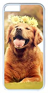 Animals Dog Golden Retriever Puppy Case for iPhone 6 Plus 5.5 inch PC Material White(Compatible with Verizon,AT&T,Sprint,T mobile,Unlocked,Internatinal) in GUO Shop