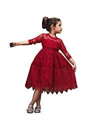 Baby Girl Long Sleeve Embroidery Princess Pageant Dresses Kids Prom Ball Gown