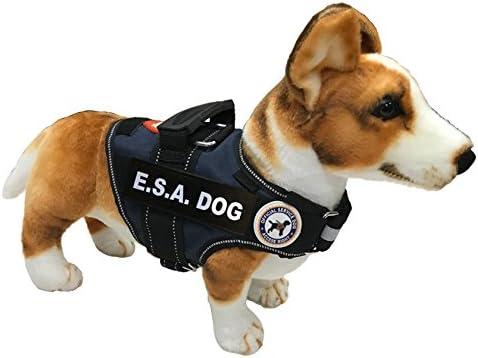 Amazon.com : LuvDoggy E.S.A Dog Vest +