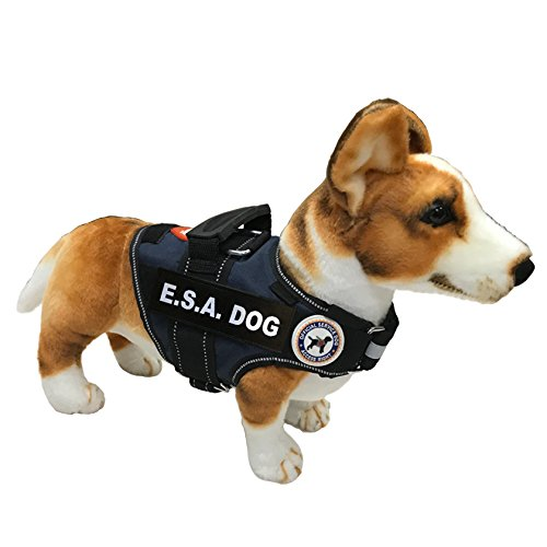 LuvDoggy E.S.A Dog Vest + Tag + Rights Cards & Booklet (XXS, Blue)