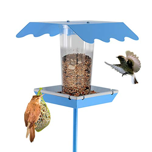 LIMEIDE Wild Bird House Feeder for Garden Yard Outside Square Stand on Ground,with Stick Stake Poles in Backyard Garden, Patio,Gift idea for ParentsBlue (Ideas Backyard Patio Easy)