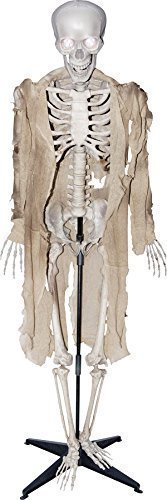 [Talking Skeleton Halloween Prop Animated Skull Sounds Haunted House Decoration] (Haunted House Prop)