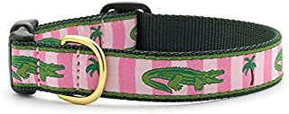 product image for Up Country Alligator Dog Collar - Medium