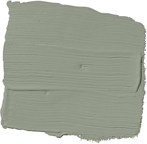 Glidden Interior Paint Primer Sage Green Tea Leaf One Coat Flat 1 Gallon Home Improvement Amazon Com