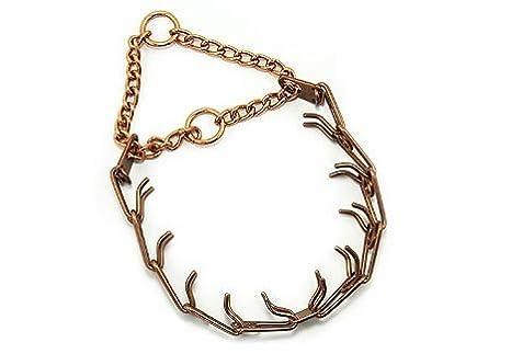 Amazon.com: curogan HS Prong Collar, L: Mascotas