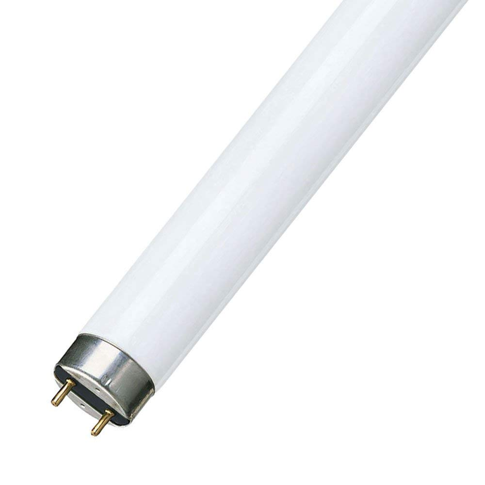 Osram 15 Watt Lumilux T8 Fluorescent Lamp Sockets