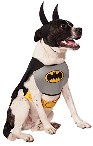 Black Pugs In Costumes (DC Comics Pet Costume, Classic Batman, Medium)