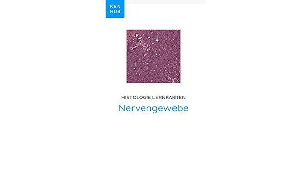 Histologie Lernkarten: Nervengewebe: Lerne alle Gewebe unterwegs ...