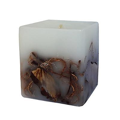 Cedar Candle- Aromatherapy - With Cedar Essential Oil