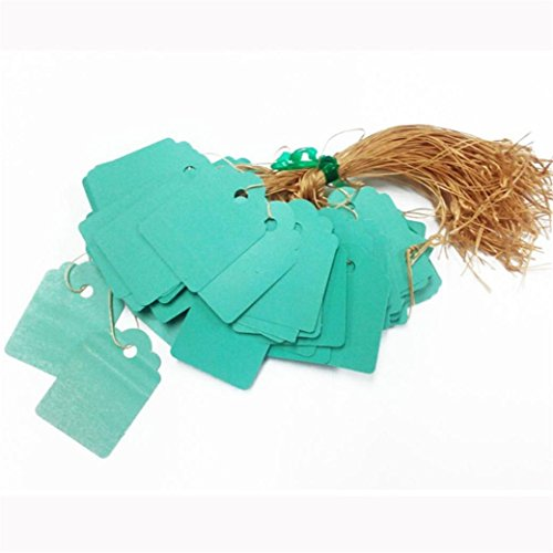 Clearance Sale!DEESEE(TM)3.6x2.5cm Lot 100pcs Strip Line Garden Label Plant Hanging Tag Mini Seed Signs Hot (Green) (Fake Artificial Aquarium Fish Tank By Bos)