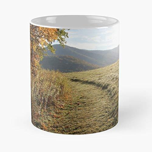 Hike Mor Tea, Coffee Mugs Funny Girf For Holiday.