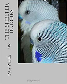 The Shelter Budgies