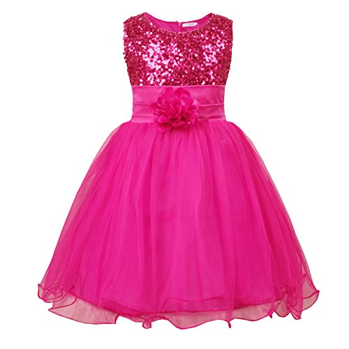 JerrisApparel Little Girls' Sequin Mesh Flower Ball Gown Party Dress Tulle Prom (4T, Rose) (Pink Glitter Flower)