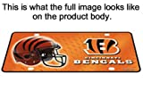 Rico Table Lamp with chrome shade, Cincinnati Bengals plate rolled in on the lamp base