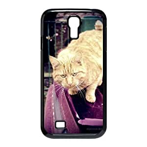 Ginger Cat Samsung Galaxy s4 9500 Black Cell Phone Case TAL856672 Phone Case For Men