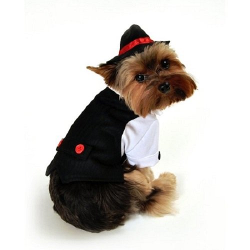 Gangster Costume For Dog (Domestic Pet Happy Halloween Gangster Dog Costume)