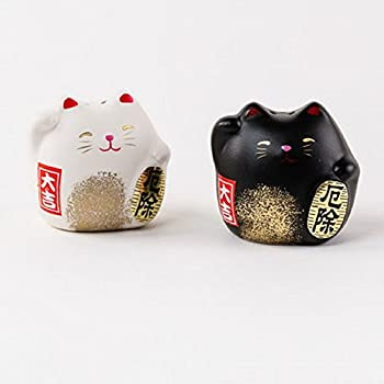 cheerful cool salt and pepper shakers. 180 Degrees Happy Welcome Cat Salt And Pepper Shaker Set In Gift Box Amazon com  Lucky and Home Kitchen