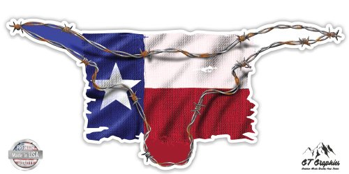 Texas Flag Barbwire Longhorn - 3
