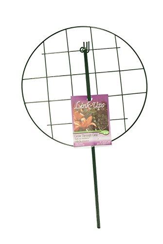 - Luster Leaf 973 20
