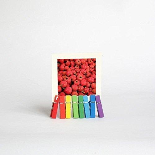 2017 Mini Desk Calendar with Rainbow octopus Stand, stocking stuffer (Christmas Card Dilbert)