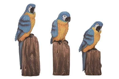- TII Set of 3 Tropical Bird Figurines - Blue and Gold Macaw Parrots 10, 9 and 8 Inches High, Sculpted Resin