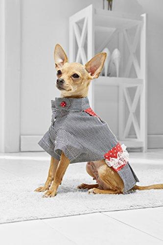 [Toy Dog Dress Shirt For Yorkie Pom Chihuahua Papillon Lhasa Apso Shih Tsu (Small Toy Size, white, black,] (Mini Dachshund Halloween Costumes)
