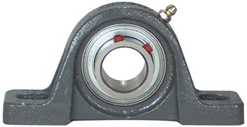 Peer Bearing FHPWC204-12G Pillow Block, Low Shaft Height, Narrow Inner Ring, Relubricable, Eccentric Locking Collar, Single Lip Seal, Cast Iron Housing, 3/4